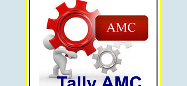 How Do Businesses Help Tally AMC / Annual Support Cover?