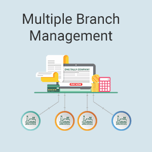 Tally ERP.9 Multiple branch managenment